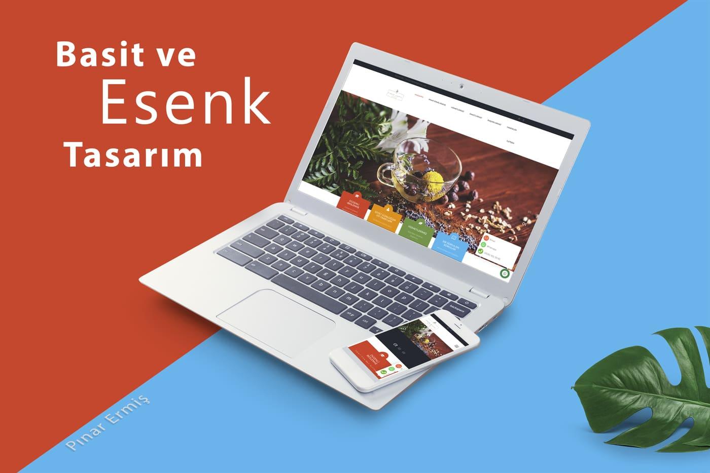 Pınar Ermiş